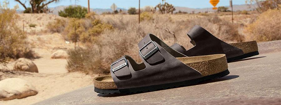 чехлите Birkenstock Arizona снимка за корица